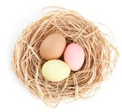 Multicolored easter eggs are in the nest Royalty Free Stock Photography