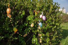 Multicolored easter eggs and ornaments on a green bush in the spring stock photography
