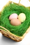 Multicolored easter eggs are in wattled basket Royalty Free Stock Photos