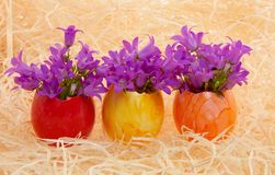 Multicolored Easter Eggs With Flowers Stock Photos