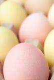 Multicolored eggs are in the cardboard box Stock Photo