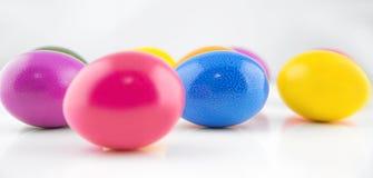 Multicolored eieren op witte achtergrond Stock Afbeeldingen
