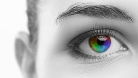 Multicolored eye macro Stock Photo