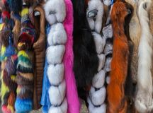 Multicolored faux fur coats stock image