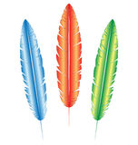 Multicolored feathers on white Royalty Free Stock Images
