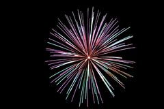 Multicolored fireworks with blue and red sparks on an isolated black background for design decoration of the holidays, the new yea. R, as well as the royalty free stock photography