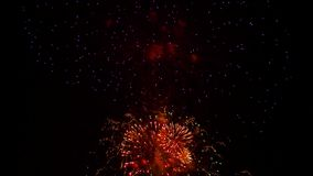 Multicolored Fireworks Sparkling At Holiday Night stock footage