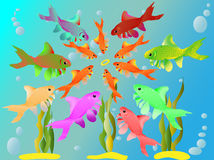 Multicolored fishes have seen a ring. Falling to the bottom Stock Photos