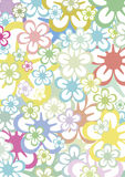 Multicolored floral background Royalty Free Stock Photography