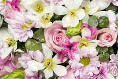 Multicolored floral background Royalty Free Stock Photos