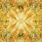 Multicolored Floral Swirls Decorative Background Royalty Free Stock Images