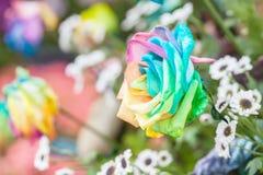 Multicolored flower .Range of Happy Joyful Stock Images