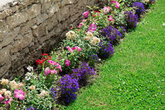 Multicolored flowerbed on a lawn Royalty Free Stock Photos
