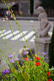Multicolored flowerbed on a street Stock Photography