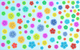 Multicolored flowers. On a blue background Stock Images