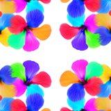 Multicolored flowers kaleidoscope pattern on white  Royalty Free Stock Photos