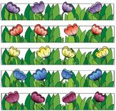 Multicolored flowers lines background Stock Image