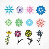 Multicolored flowers. Stock Photos
