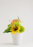 Multicolored Flowers in a vase, isolated Stock Images