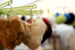 Multicolored fluffy keychain on the shop-window showcase. royalty free stock images