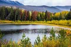 Multicolored forests. The snow-capped Rocky Mountains of Canada. Multicolored autumn forests grow along the cold river. The concept of active and automobile Stock Photos