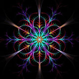 Multicolored fractal pattern or snowflake Royalty Free Stock Photos
