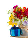 Multicolored freesia flowers with gift box Royalty Free Stock Photography