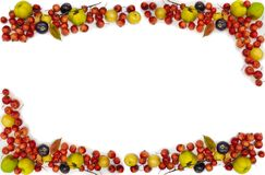 Multicolored fruit berries frame. High resolution For recipes stock image