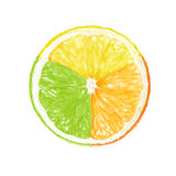 Multicolored fruit isolated Royalty Free Stock Photography