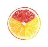 Multicolored geïsoleerd fruit Royalty-vrije Stock Foto's