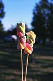 Multicolored gevlechte heemst op houten stokken voor het roosteren Stock Afbeeldingen
