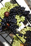 Multicolored Grapes and Plums Royalty Free Stock Images