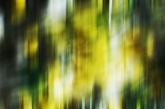 Multicolored green gold white gray blurred shades, shapes, geometries, abstract creative background. Multicolored vivid green gold white rainbow colors, blurred Royalty Free Stock Photo