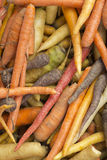 Multicolored Heirloom Carrots Royalty Free Stock Photo
