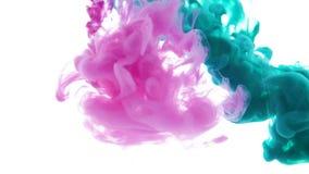 Multicolored inktstroom in verf van de water de Groene en roze werveling in water op een witte achtergrond stock footage