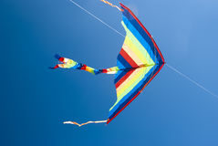 Multicolored kite Royalty Free Stock Photo