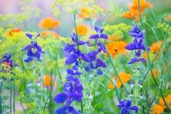 Multicolored kleine bloemen royalty-vrije stock afbeeldingen