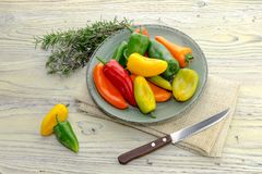 Multicolored, kleine peper op een plaat Stock Foto's