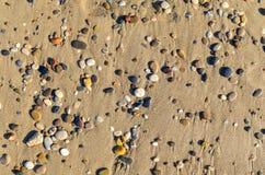 Multicolored kleine stenen die op de vlakte van de zandkust liggen lagen stock afbeelding