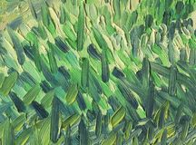 Multicolored large and rough multidirectional brush strokes. Warm yellow and green scale. Grass in the rays of the evening sun. Oil painting on canvas Stock Photos