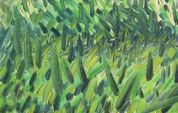 Multicolored large and rough multidirectional brush strokes. Warm yellow and green scale. Grass in the rays of the evening sun. Oil painting on canvas Royalty Free Stock Images