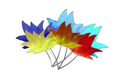 Multicolored leaves. Autumn leaves in multicolors on white background Royalty Free Stock Photography