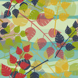 Multicolored leaves background Royalty Free Stock Photos