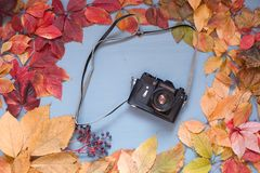 With multicolored leaves camera on a wooden background. Film camera on a wooden background with multicolored leaves royalty free stock photo