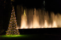 Multicolored licht toont met waterfontein in tuin Stock Afbeeldingen