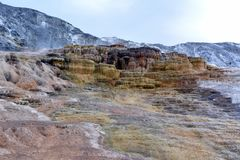 Multicolored limestone deposits in Mammoth Hot Springs in Yellowstone park.  royalty free stock photography
