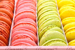 Multicolored macaroon. In the box stock images