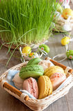 Multicolored meringues macaroons in a wicker basket Easter eggs Royalty Free Stock Photos
