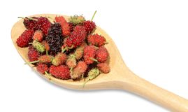 Multicolored of mulberry placed on wooden spoon. stock photography