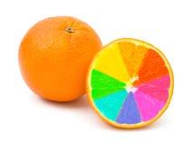 Multicolored orange fruits. Isolated on white background Royalty Free Stock Photography